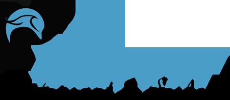 http://www.hotel-delphin.ch/_tmc_daten/Image/_logo.png