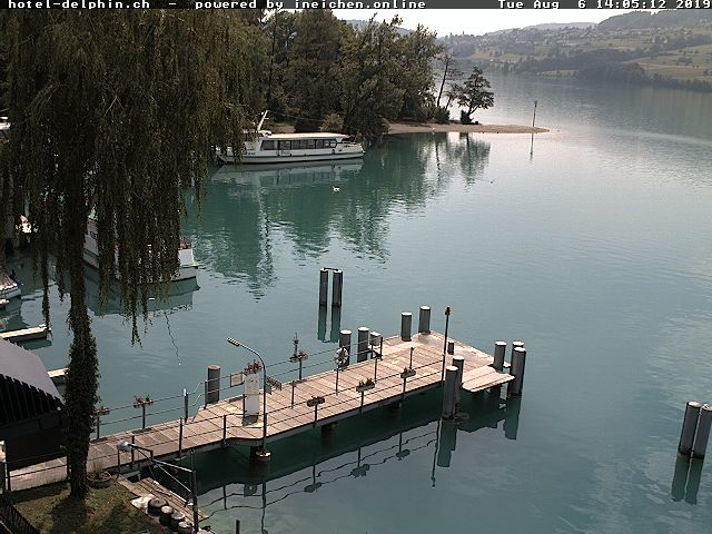 Webcam Hallwilersee Hotel Delphin